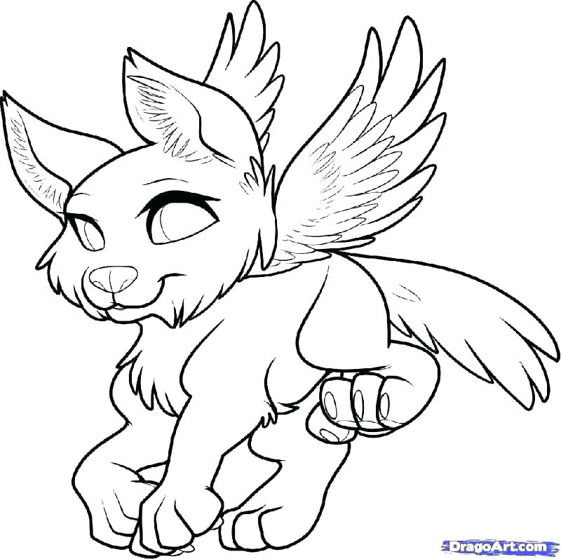 800x797 Coloring Page Wolf