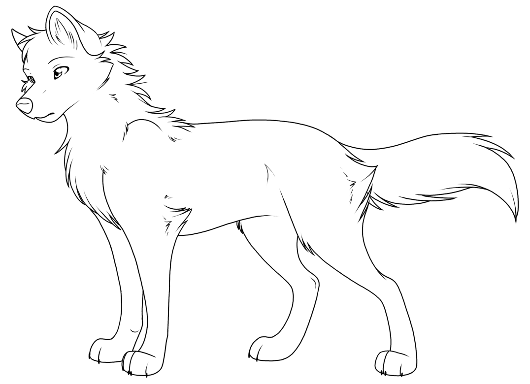 1076x780 Anime Wolf Coloring Pages