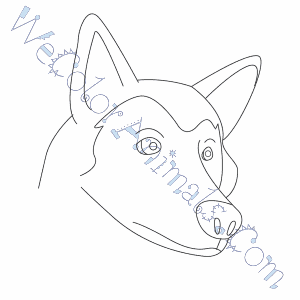 300x300 Wolf Head Coloring Pages
