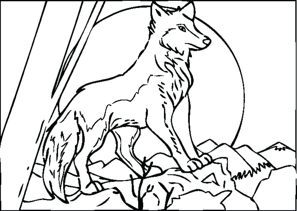 1000x713 Wolf Howling Moon Coloring Pages Color Page Anime At The Cute Baby