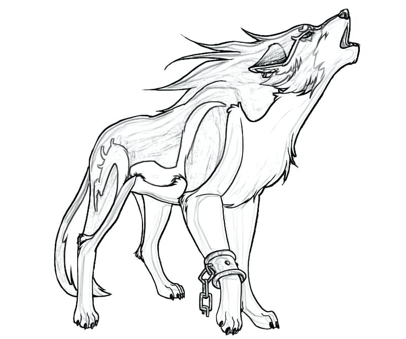 800x667 Howling Wolf Coloring Pages Outstanding Wolf Coloring Pages