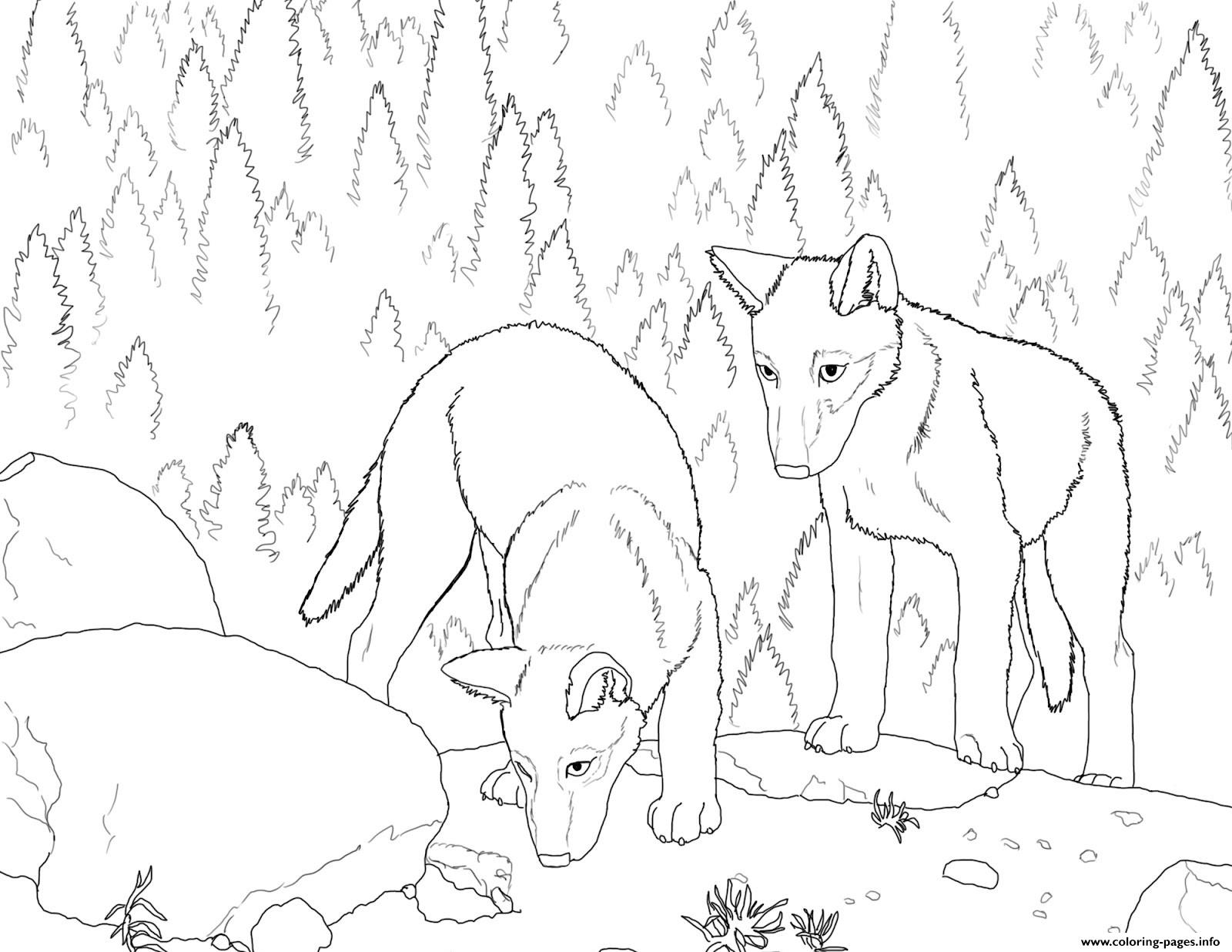 1600x1236 Wolf Pack Coloring Pages Funycoloring Adorable Realistic