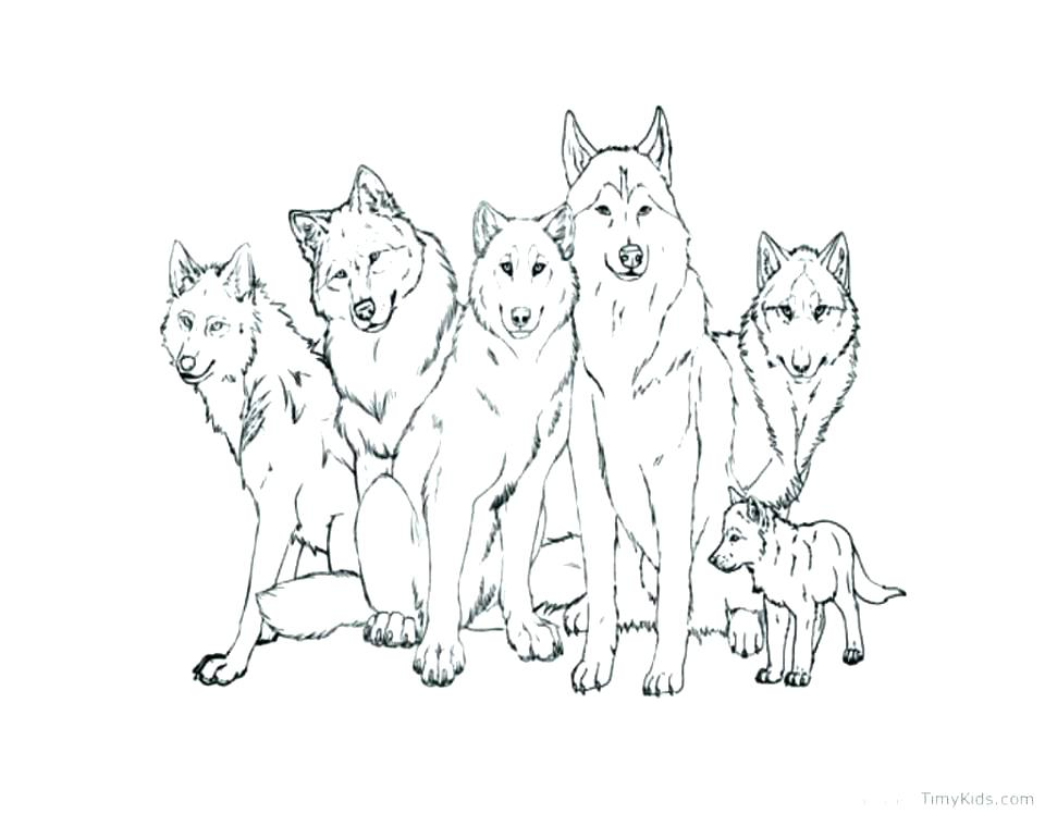960x748 Anime Wolf Coloring Pages Coloring Wolf Wolf Coloring Wolf