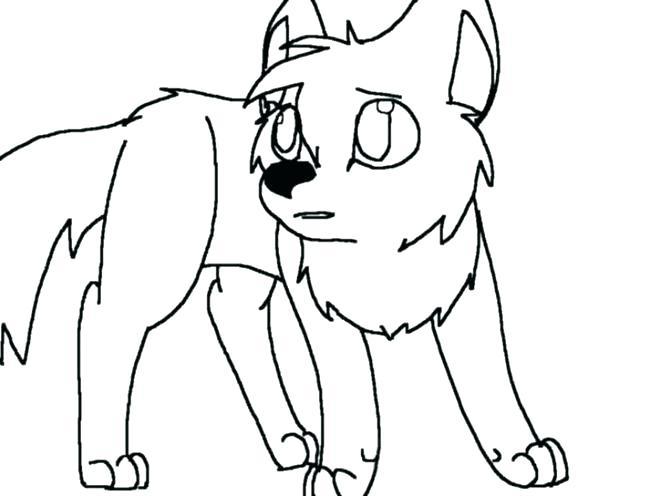 671x496 Wolf Pup Coloring Pages Wolf Pup Coloring Pages Medium Size