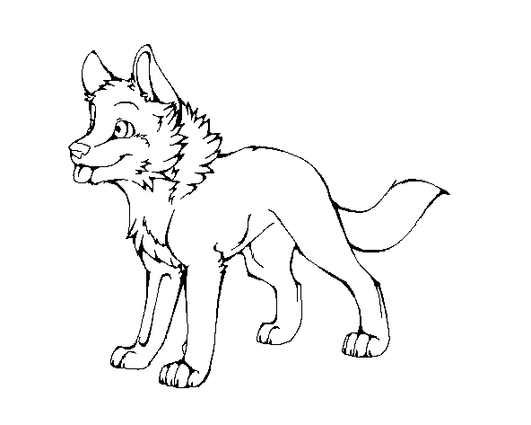 592x473 Wolf Pup Lineart