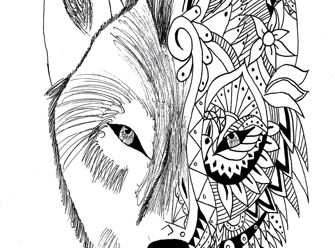 1080x800 Drawn Howling Wolf Winging Page Pencil And In Coloring Pages Free