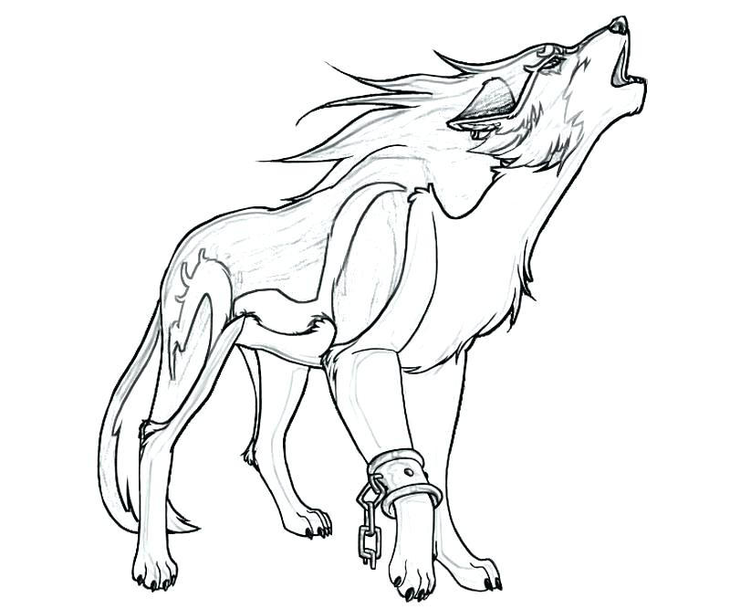 800x667 Stunning Free Wolf Coloring Pages Drawn Howling Wolf Wing Coloring