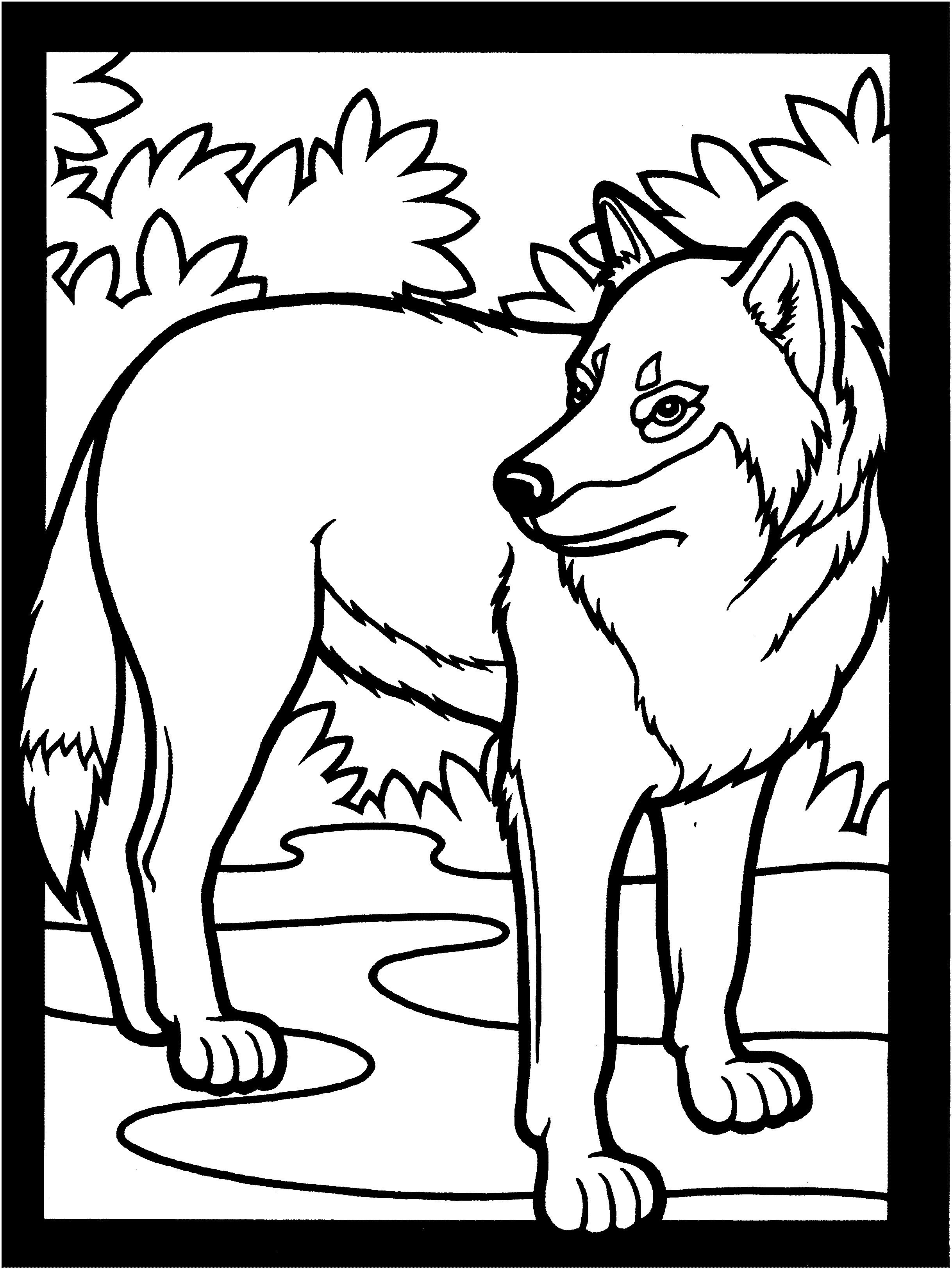 2437x3249 Coloring Pages Wolf Elegant Free Wolf Coloring Pages