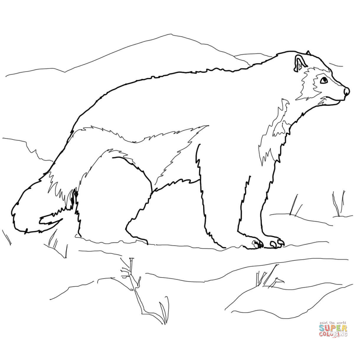 1200x1168 Wolverine Animal Drawing Arctic Wolverine Coloring Page Free