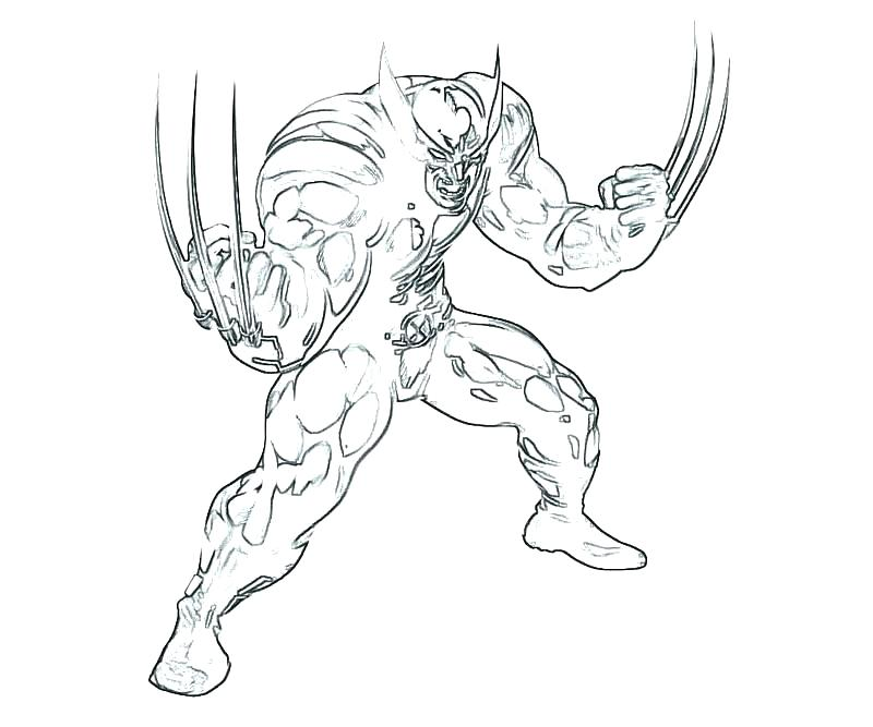 800x667 Wolverine Coloring Pages Easy And Wolverine Coloring Pages
