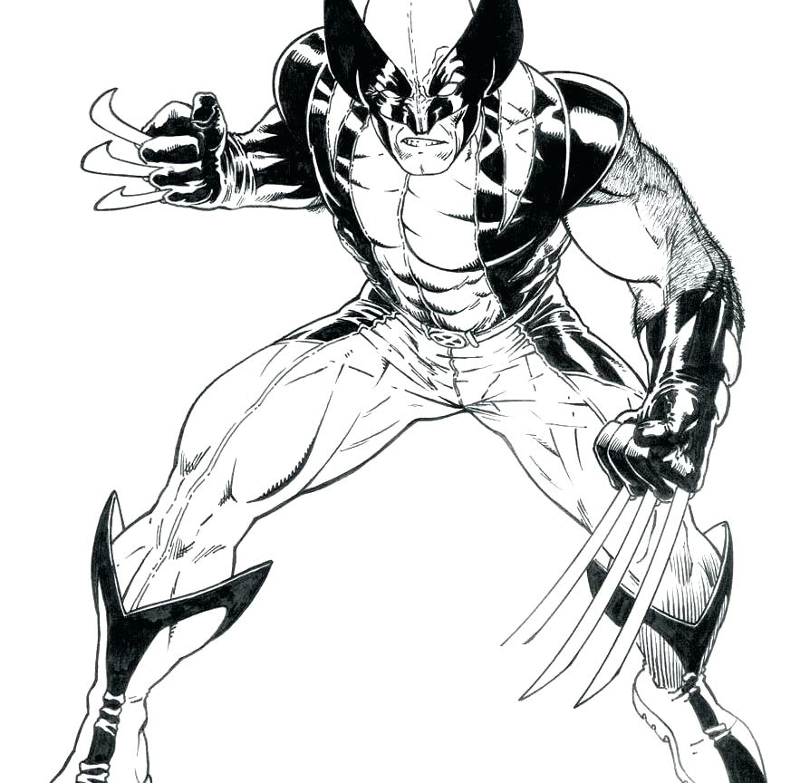 894x864 Wolverine Coloring Page Wolverine Color Pages Cute Wolverine