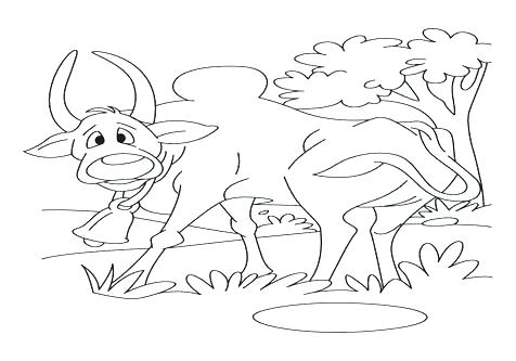 476x333 Wombat Coloring Page Coloring Trend Medium Size Common Wombat