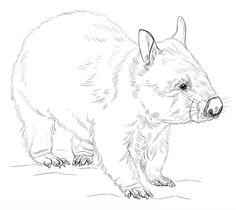 236x210 Funny Wombat Felt Obsession Australian Animals