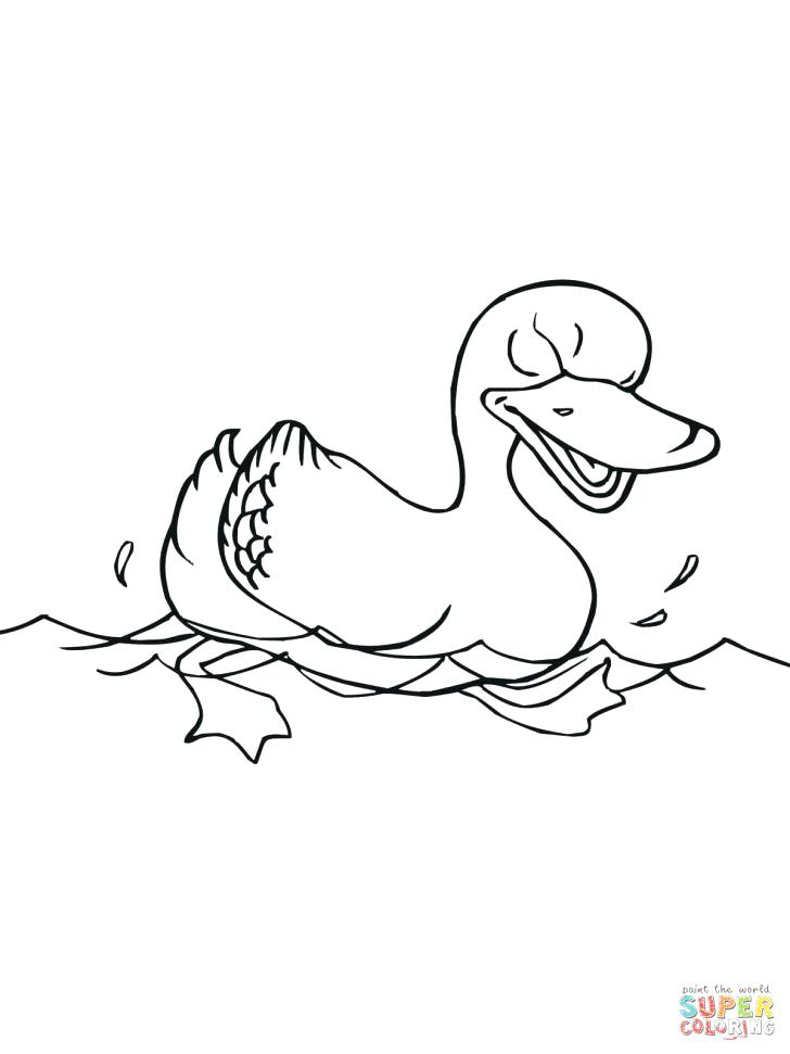 728x971 Duck On A Bike Coloring Page Duck Coloring Page Ducks Pages
