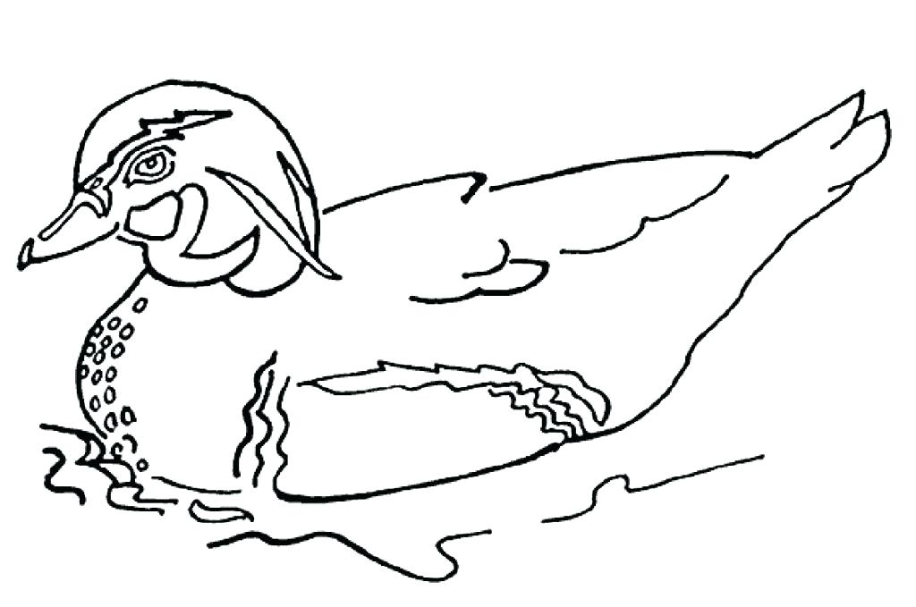 1024x679 Duckling Coloring Page Coloring Pages Duck How To Draw Baby Duck