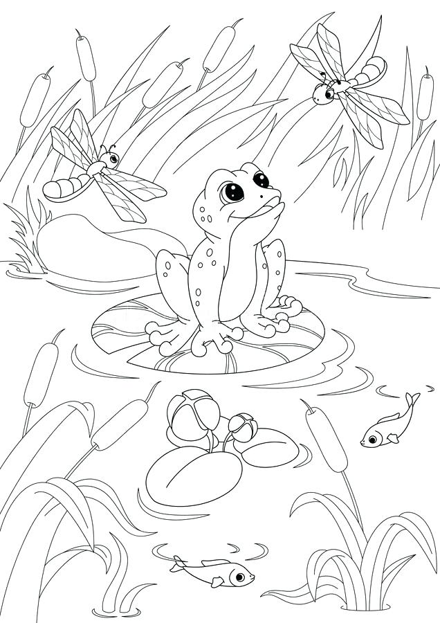 636x900 Pond Coloring Page Coloring Page Duck Wood Duck Coloring Page