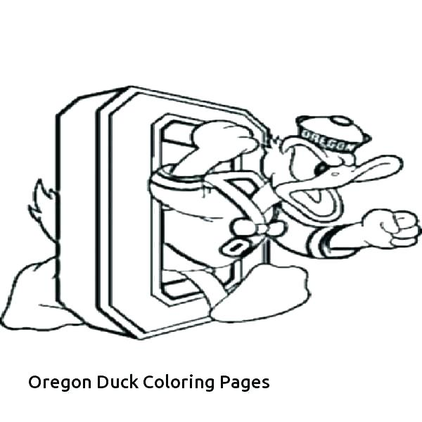 600x600 Coloring Pages Ducks Pond Coloring Page Coloring Page Duck Wood