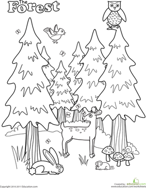 301x389 Forest Coloring Page Worksheets, Pre School And Animal