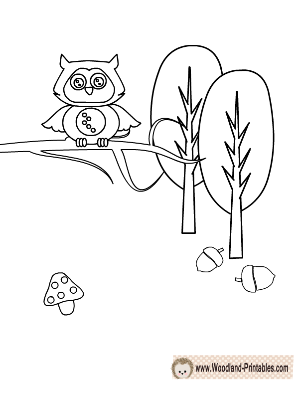 Woodland Coloring Pages At Getdrawings Com Free For
