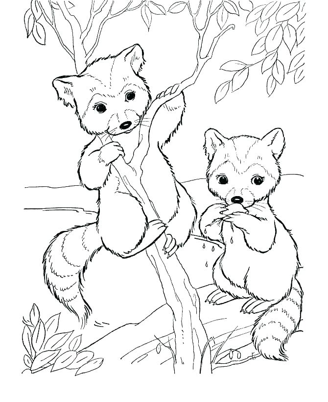670x820 Woodland Animals Coloring Pages Animal Mandala Coloring Pages Free
