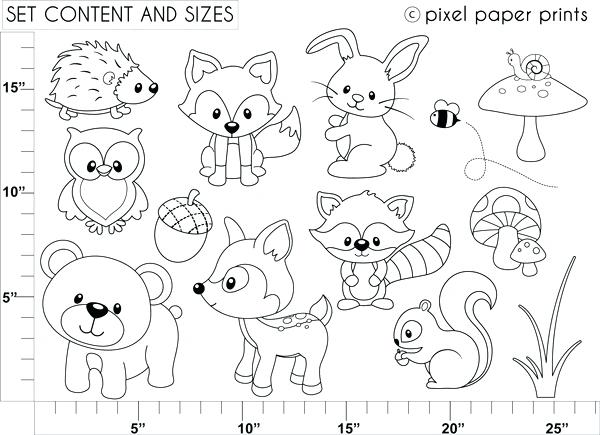 600x435 Woodland Animals Coloring Pages Woodland Animals Coloring Pages