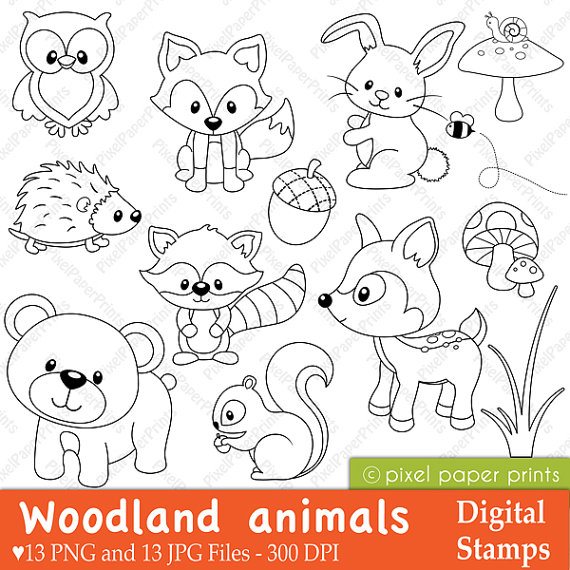 570x570 Woodland Animals Digital Stamps Clipart