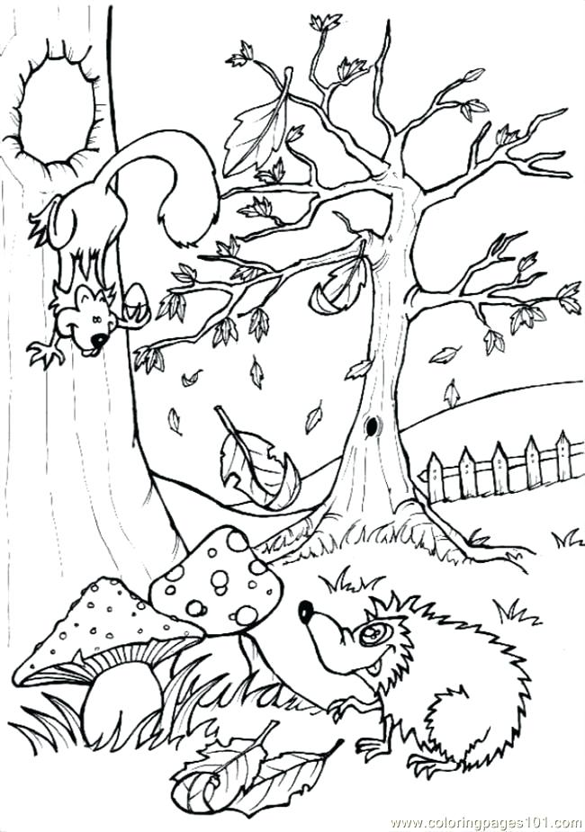 650x925 Woodland Coloring Pages