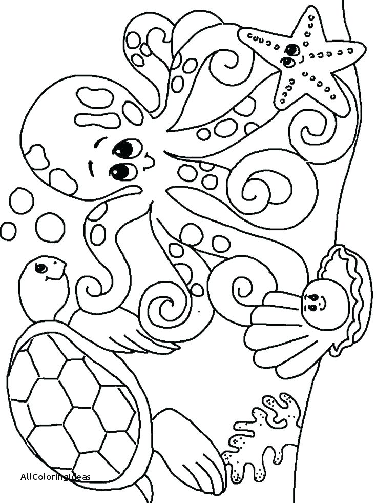 Woodland Creatures Coloring Pages At Getdrawings Com Free