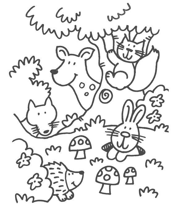 557x674 Some Coloring Pages In The Theme Forest Animals For Preschoolers
