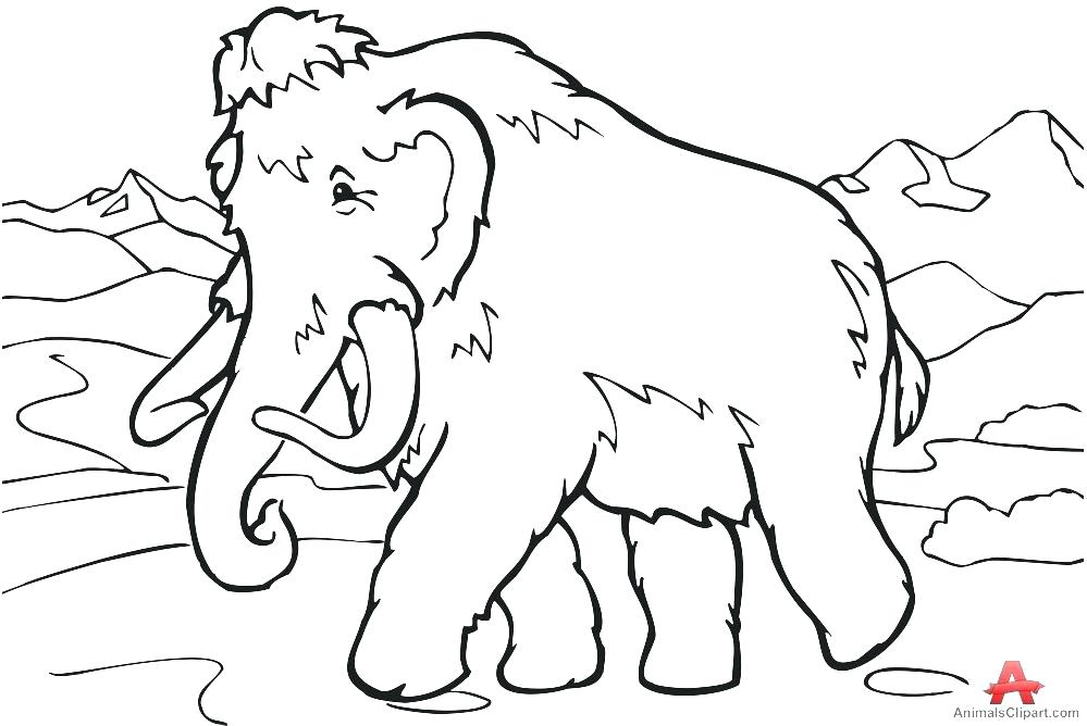 999x668 Mammoth Coloring Page For Kids Free Printable Picture This
