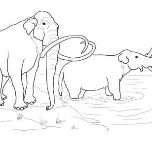 308x308 Free Mammoth Coloring Pages