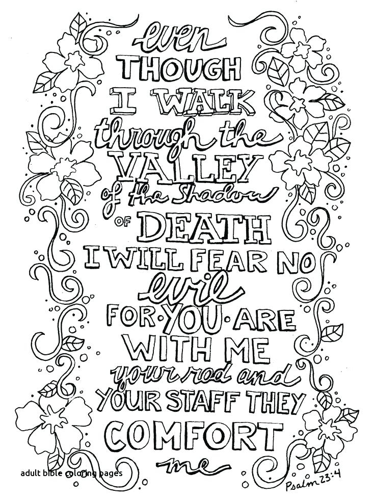 736x979 Whatever Is Lovely A Coloring Book For Reflection And Worship