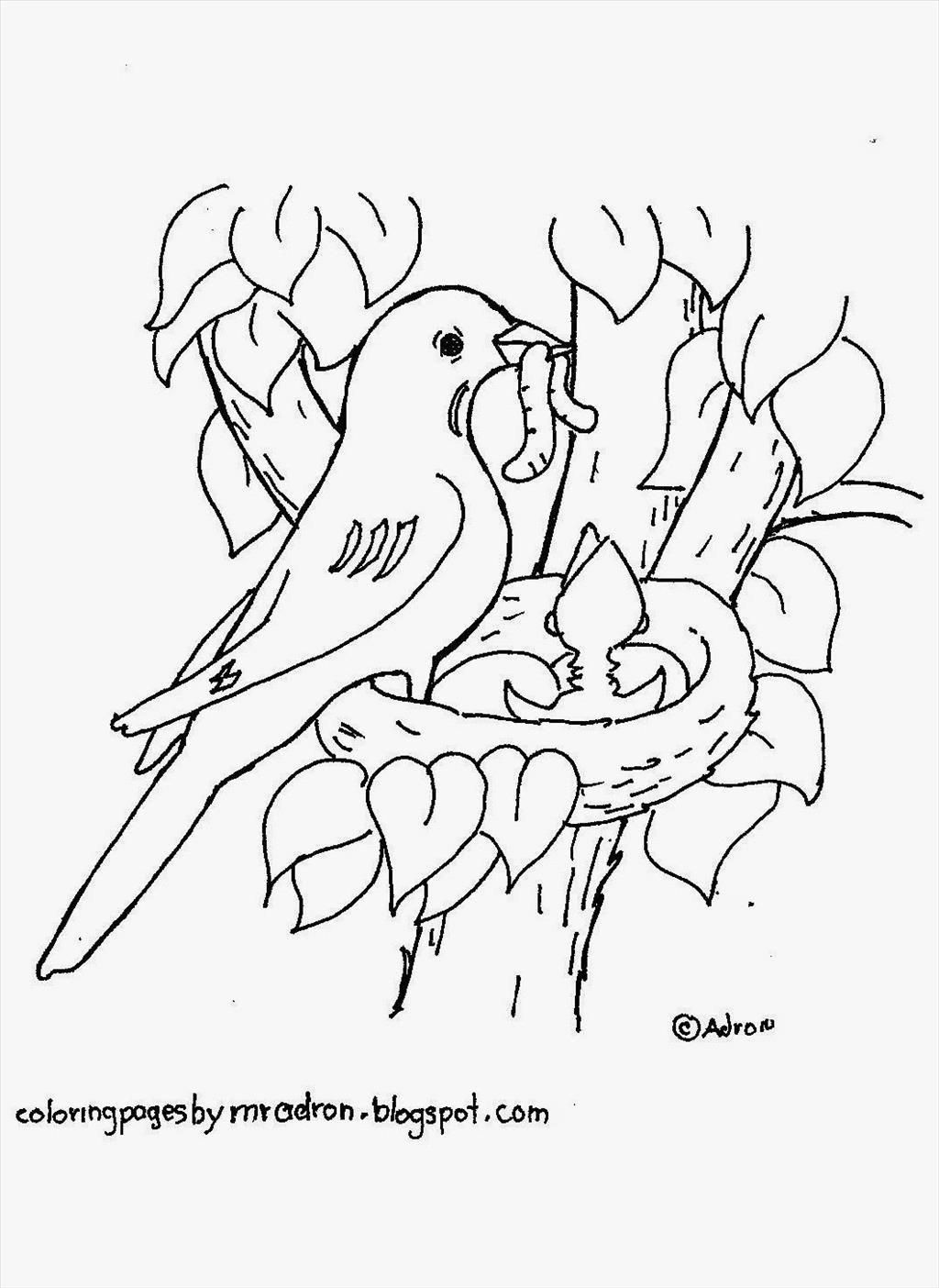 1024x1404 Download Bird Nest Coloring Page Wren Build A Gif Adult