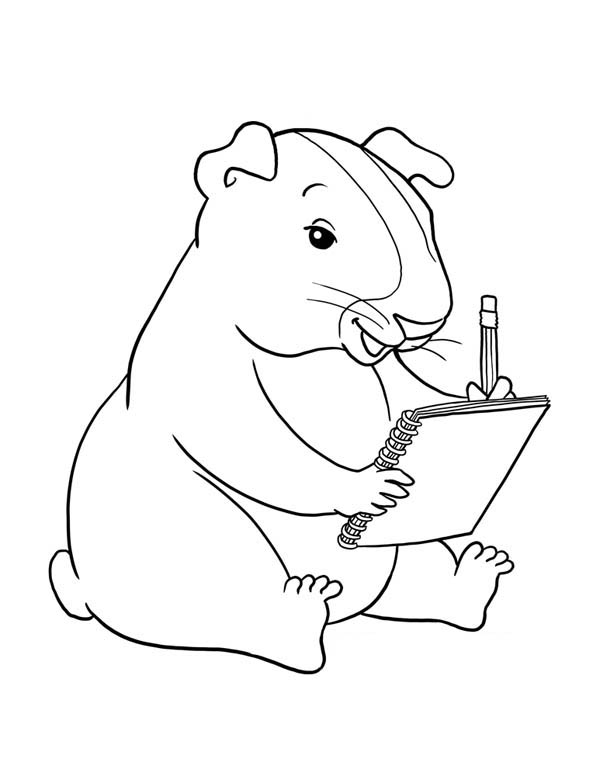 600x776 Guinea Pig Writing Coloring Page Color Luna