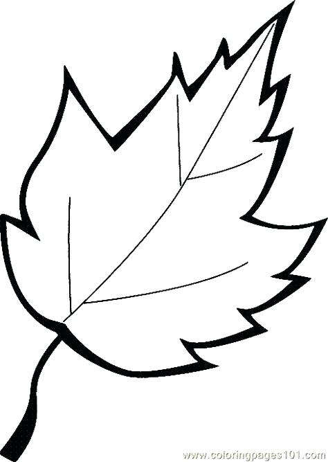 474x667 Leaf Clover Coloring Sheets Two Autumn Leaf Coloring Page Leaves