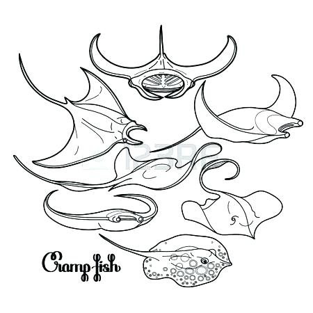 450x450 X Ray Fish Coloring Page Manta Ray Coloring Page Seamless Vector