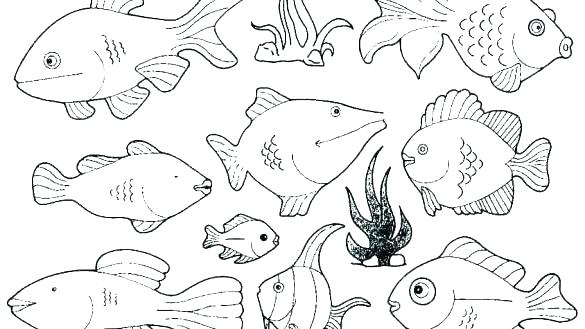 585x329 Ray Coloring Pages Coloring Pages For Kids Ray Fish Common Ray