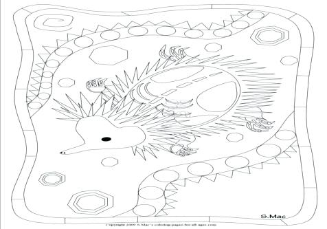 476x333 X Ray Coloring Page X Ray Fish Coloring Page Letter X Alphabet