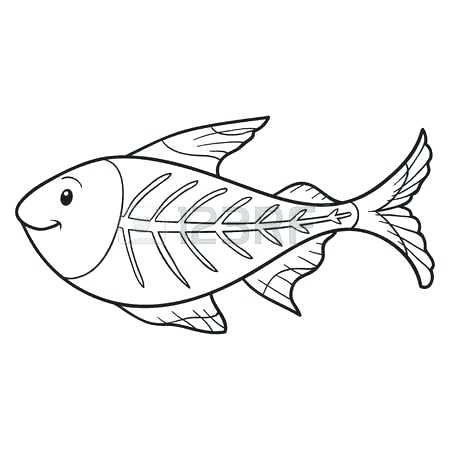 450x450 X Ray Coloring Pages Incredible Inspiration Tetra Animal Coloring