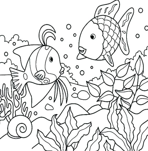 564x572 X Ray Fish Coloring Page Rainbow Fish Template To Color