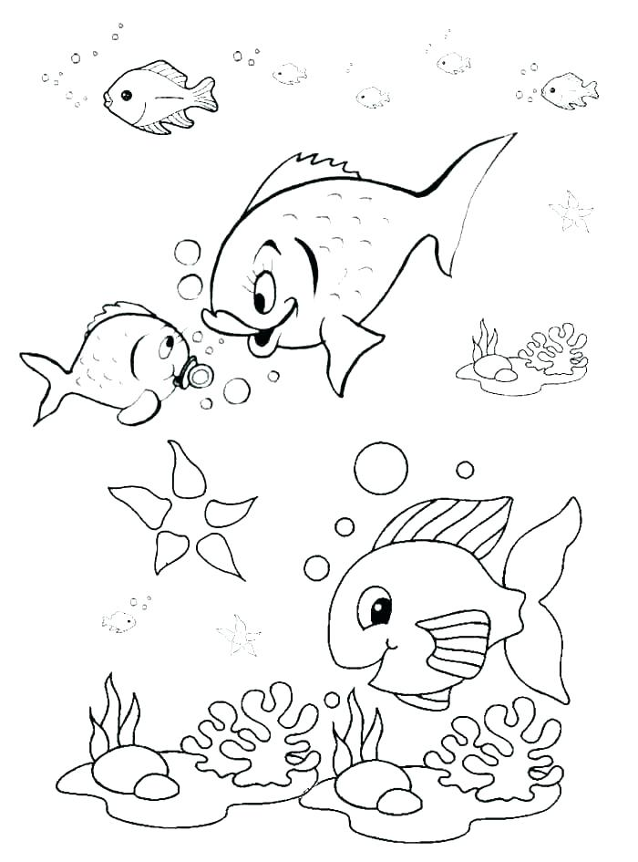 700x945 X Ray Fish Coloring Page