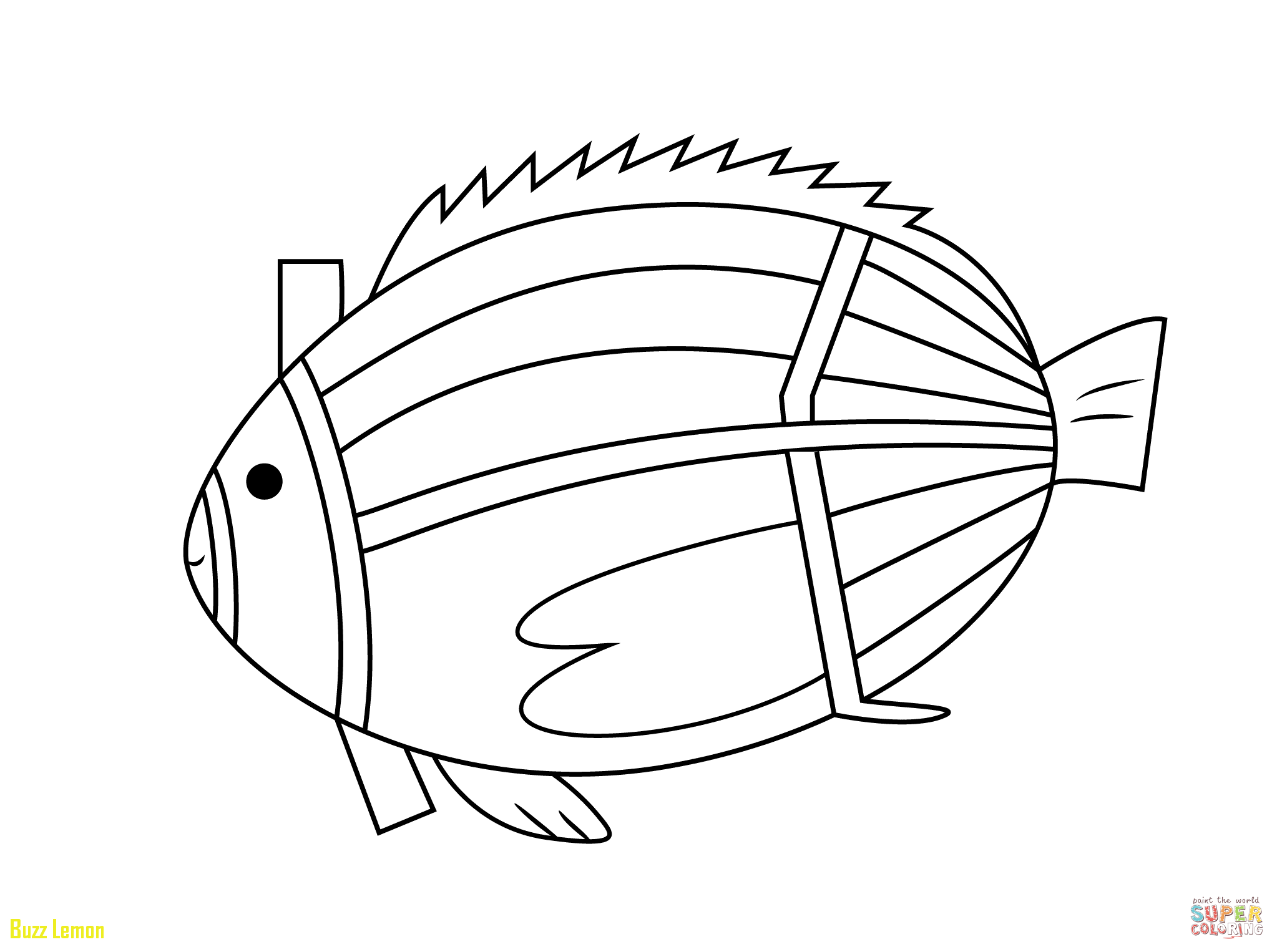 2046x1526 Elegant X Ray Fish Coloring Page Buzz Coloring