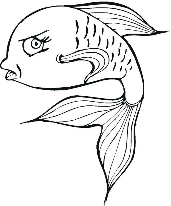 550x661 Empty Fish Bowl Coloring Page Impressive Design Tetra Animal