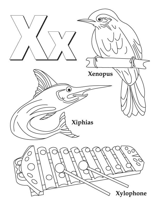 612x792 Xylophone Coloring Page Many Interesting Cliparts