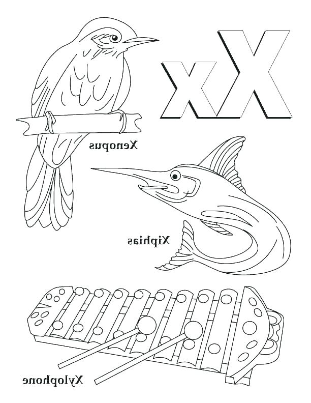 612x792 Letter X Coloring Page Xylophone Coloring Page Printable Xylophone