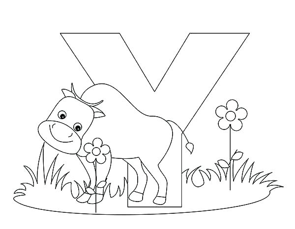 600x467 Letter Y Coloring Pages Letter Y Coloring Pages Letter Y Coloring