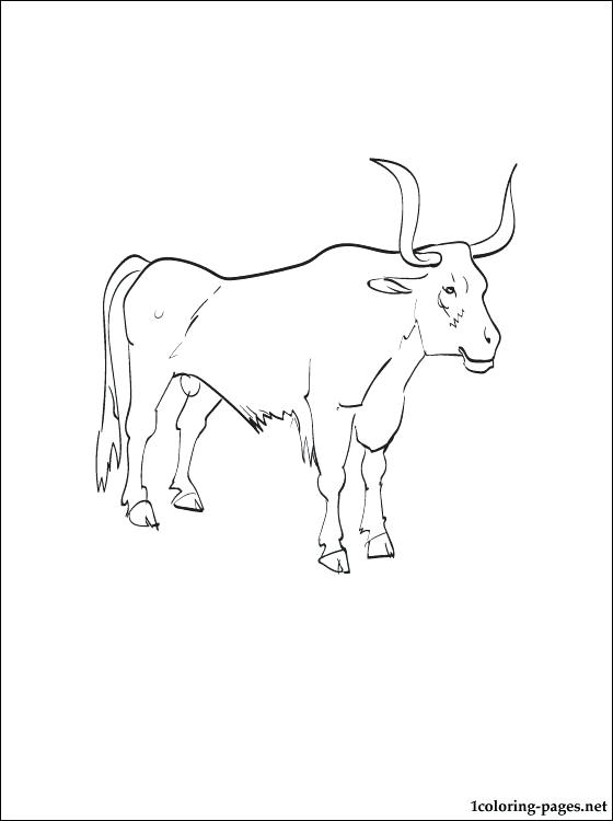 560x750 Ox Coloring Page Oxen Printable And Coloring Page Wizard Of Oz