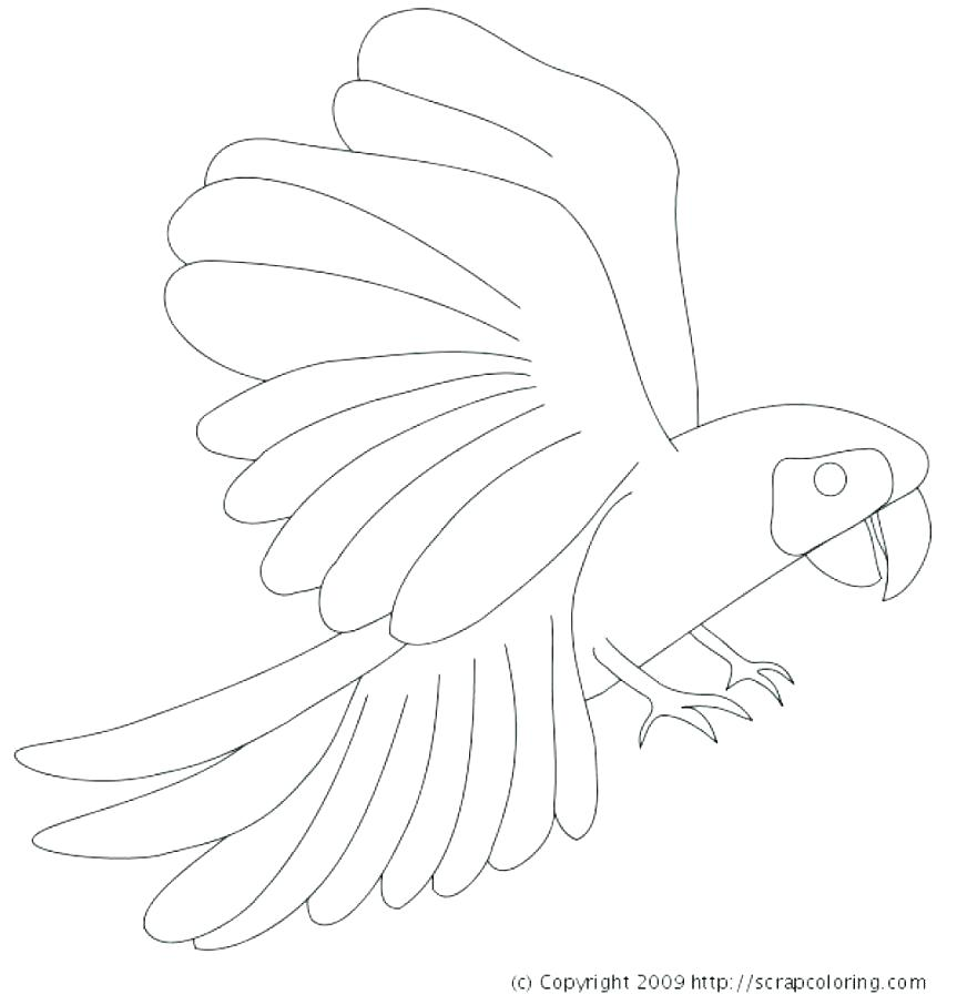 863x906 Yellow Coloring Page Coloring Page Big Yellow Bus Yellow Jacket