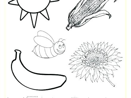440x330 Yellow Coloring Page