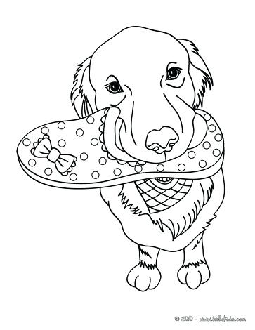 363x470 Yellow Lab Coloring Pages Yellow Lab Puppy Coloring Pages